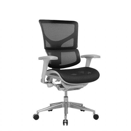 Ergo-Dynamic Mesh Office Chair Grey Frame